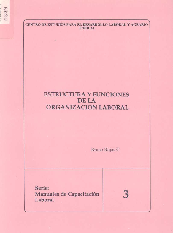 CIDSIU-0349_estructura_y_funciones_organizacion_laboral_3_001.png