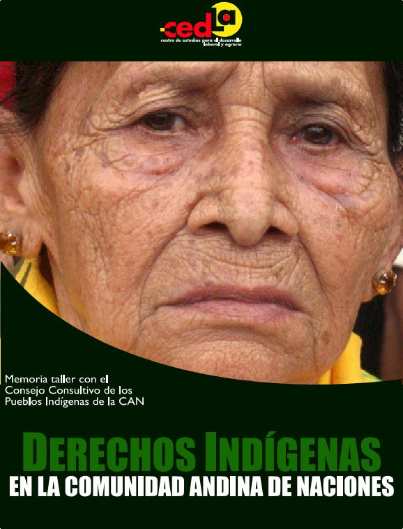 derechos_indigenas_en_la_can_memoria_del_taller_001.png