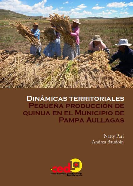 dinamicas_territoriales_pequena_produccion_quinua_municipio_pampa_aullagas_001.png